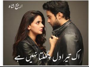 Ek Tera Dil Pigalta Nahi Hai Novel by Areej Shah